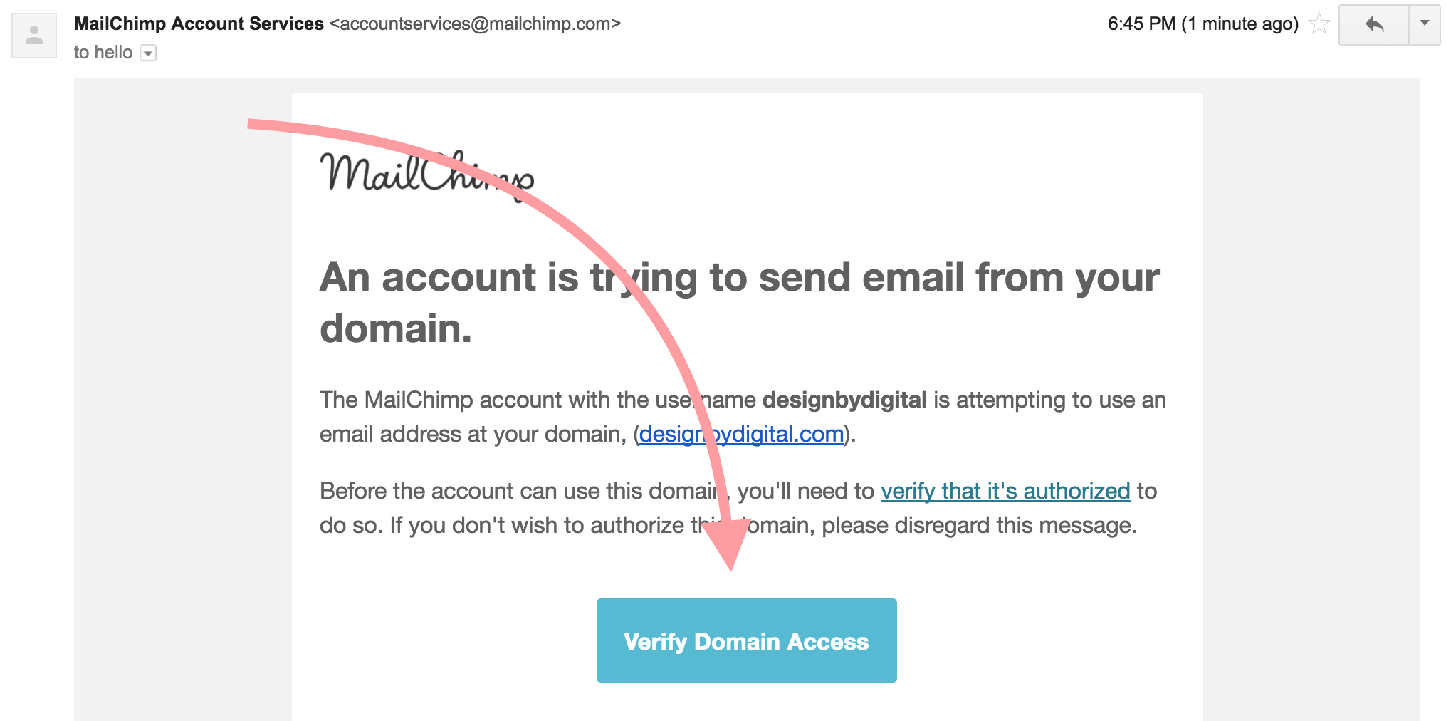 Click Email To Verify Domain Mailchimp