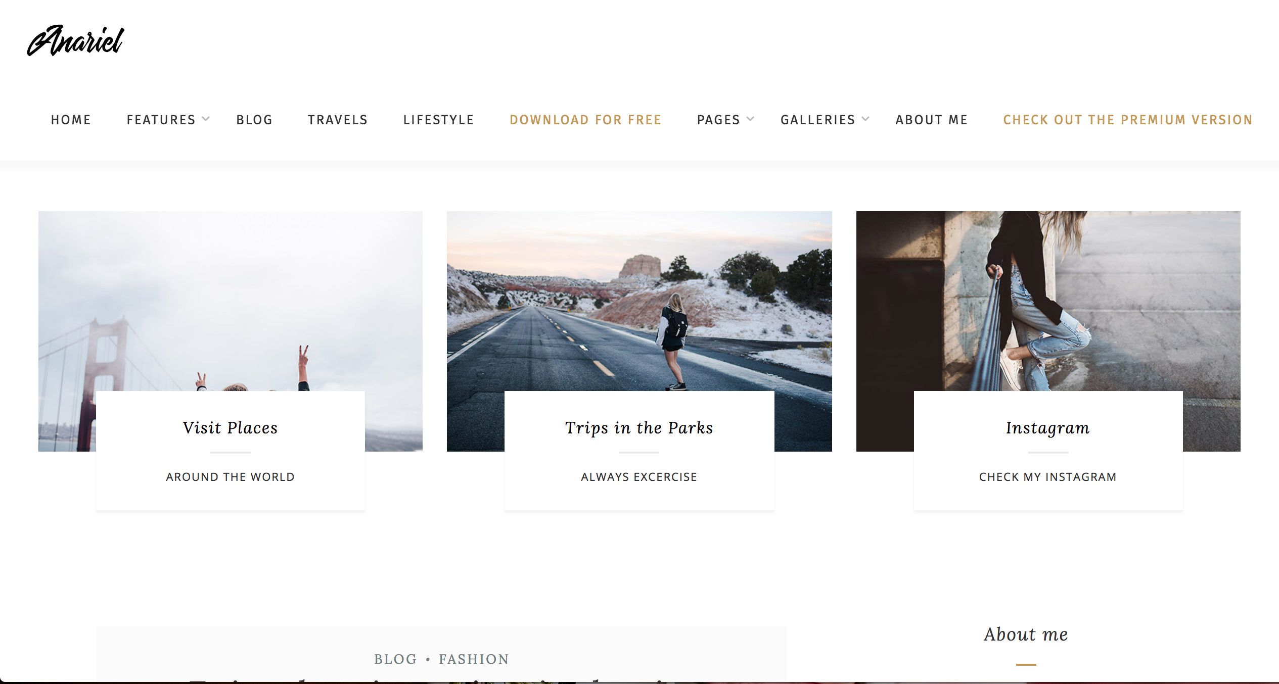 Anariel Lite Free Theme WordPress